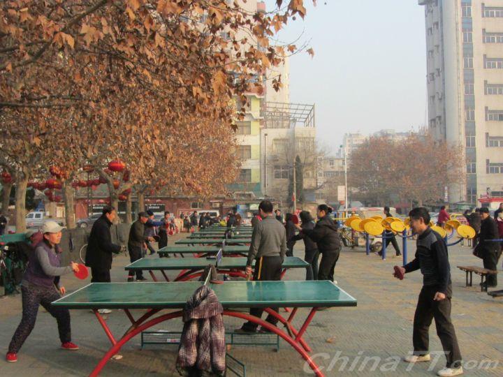 局长反手总局在江苏打乒乓球刘鹏体育了得!-二月二龙舞龙图片