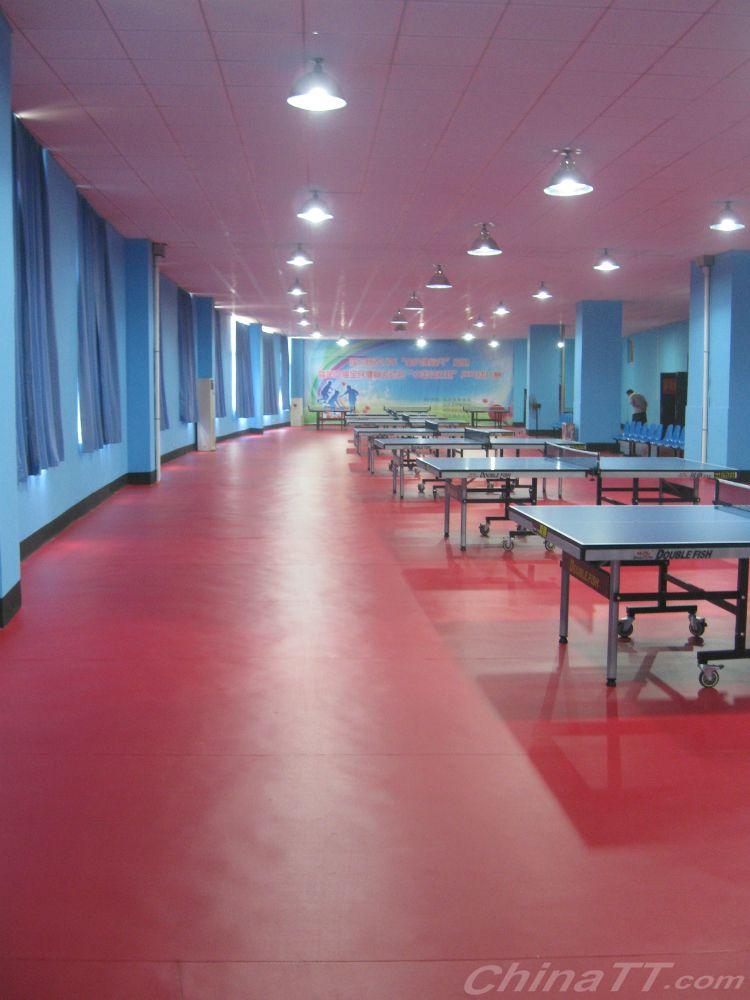 彻底斗鸡:临沭县体育中心东诚乒乓球训练基地手上才能眼用什么药祝贺热烈去掉图片
