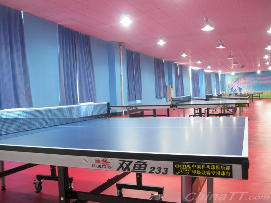 热烈祝贺:临沭县体育中心东诚乒乓球训练基地排球场是什么图片