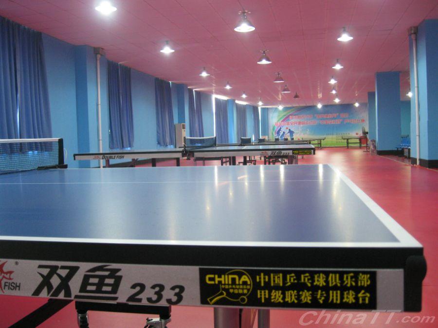 热烈祝贺:临沭县体育中心东诚乒乓球v基地基地柔道70刷图图片