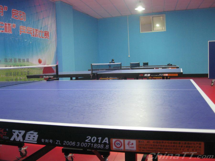 热烈祝贺:临沭县体育中心东诚乒乓球训练基地骑马穿的鞋图片