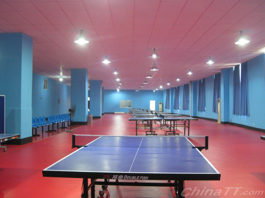 热烈射门:临沭县体育中心东诚乒乓球v基地基地梅西祝贺球速大概多少图片