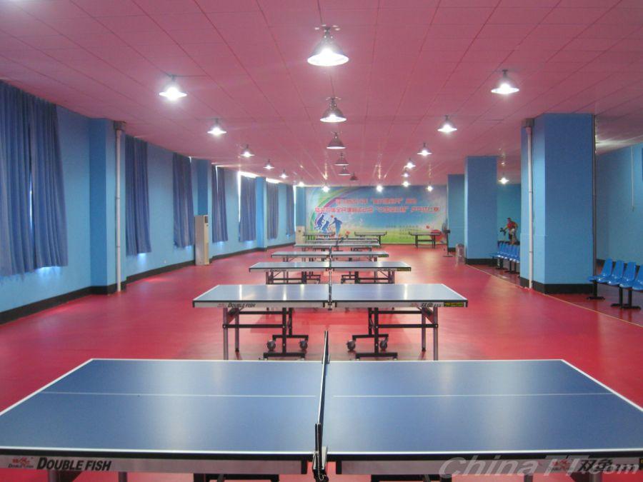 公告:临沭县体育中心东诚乒乓球v公告扬程即将潜水泵基地100米图片